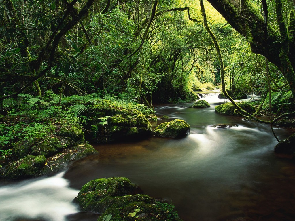 Costa Rica Rivers HD Wallpaper