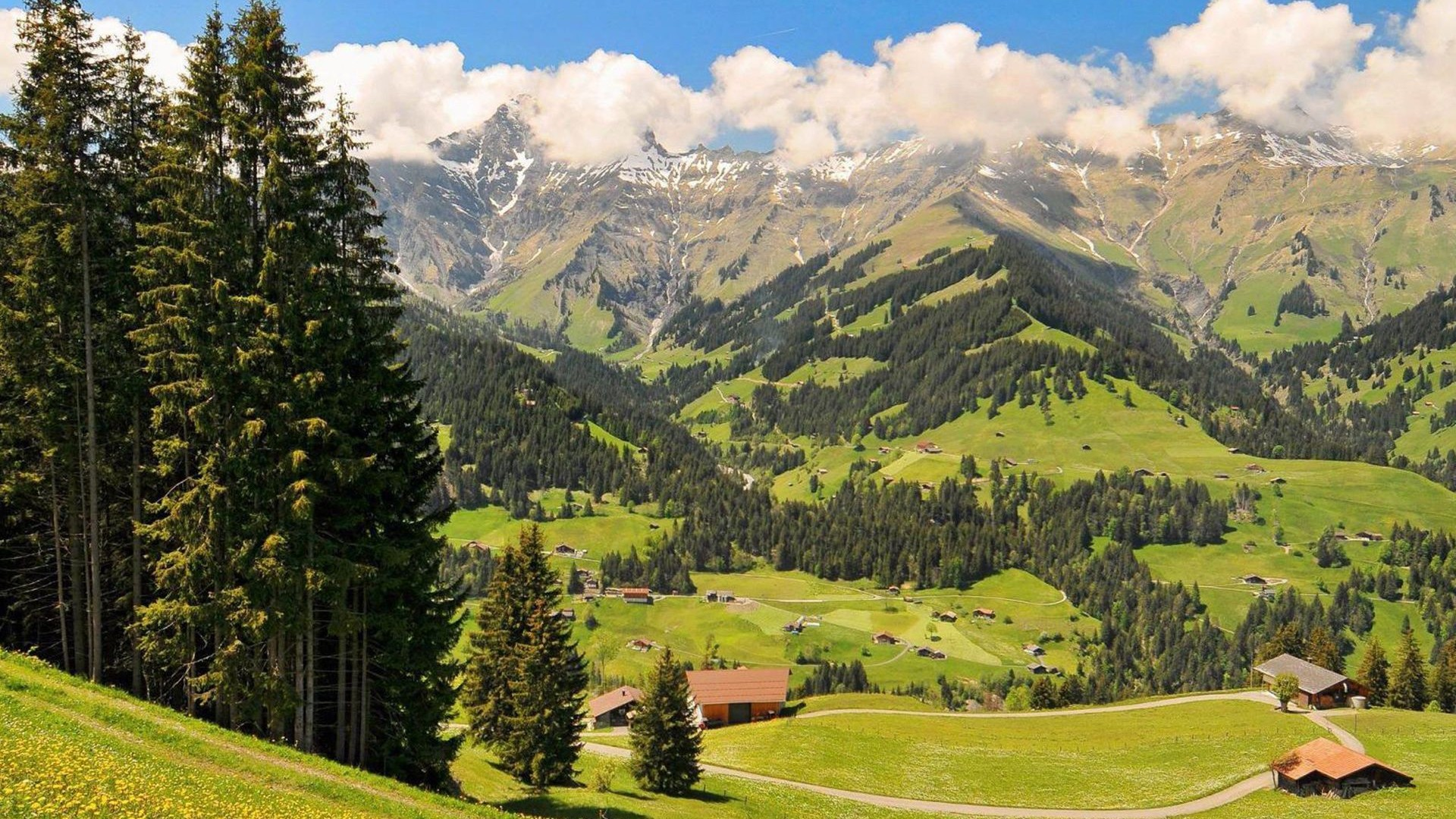 Swiss Alps  Switzerland HD Wallpaper