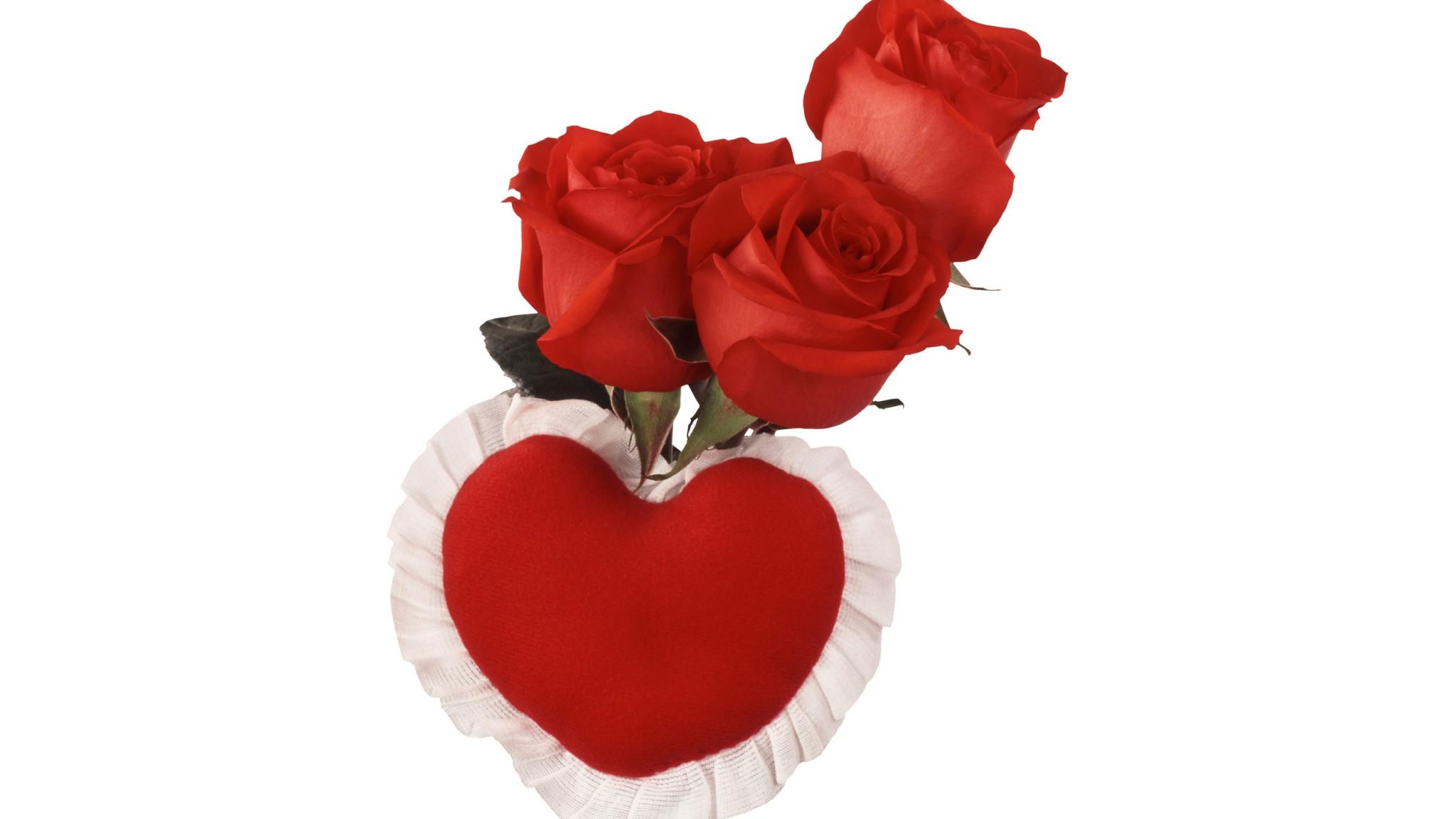 Rose Heart  February 14  Darling Honey Sweet Lovers  Holiday HD Wallpaper