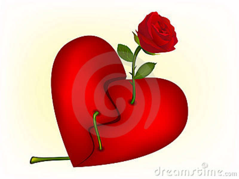 Illustration Of Red Rose Through A Broken Heart Stock Photography HD Wallpaper