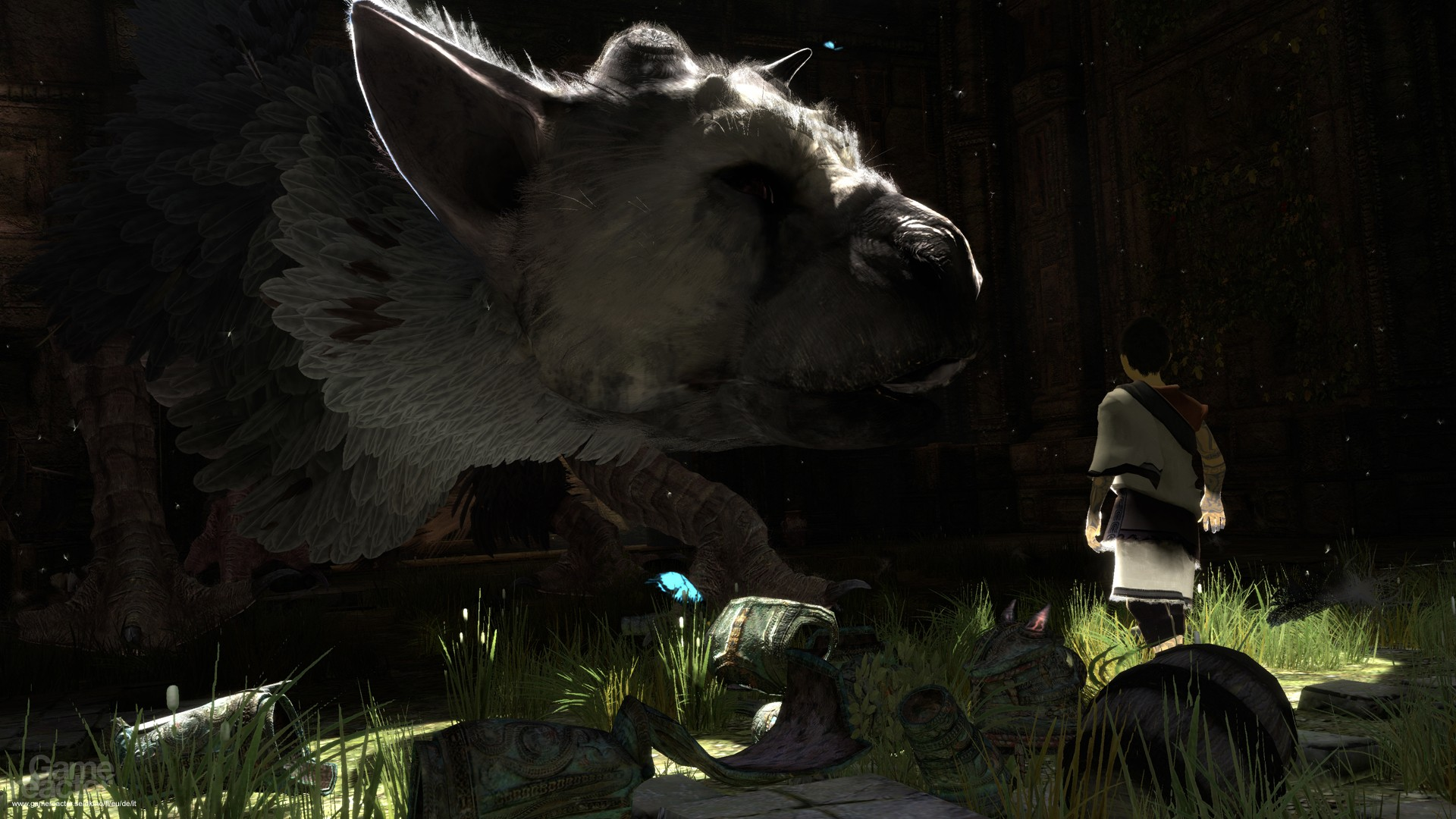 The Last Guardian HD   6378    Game  HD HD Wallpaper