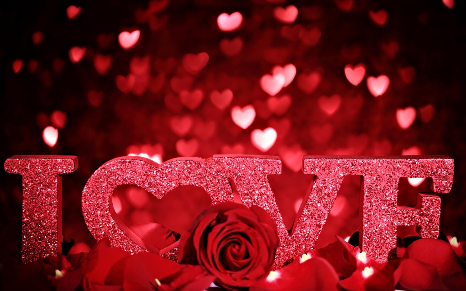 Download HD h bschen Liebe Herzen in der roten Rose Tapete HD Wallpaper