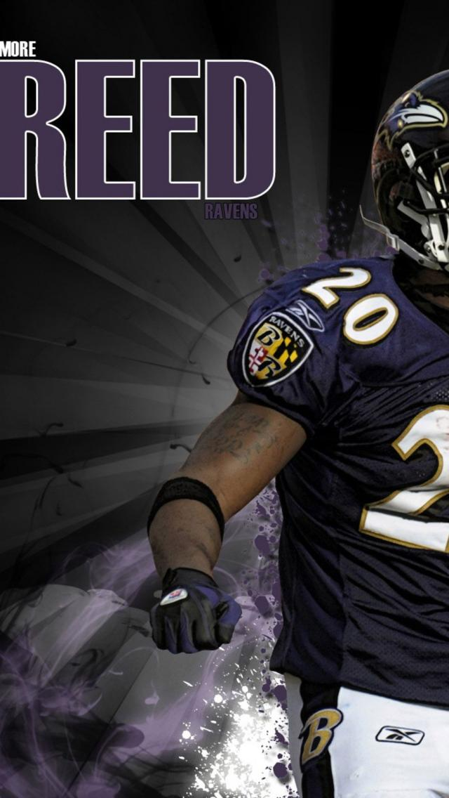 Ed Reed  Baltimore Ravens  NFL  Football   Bakgrundsbilder HD Wallpaper