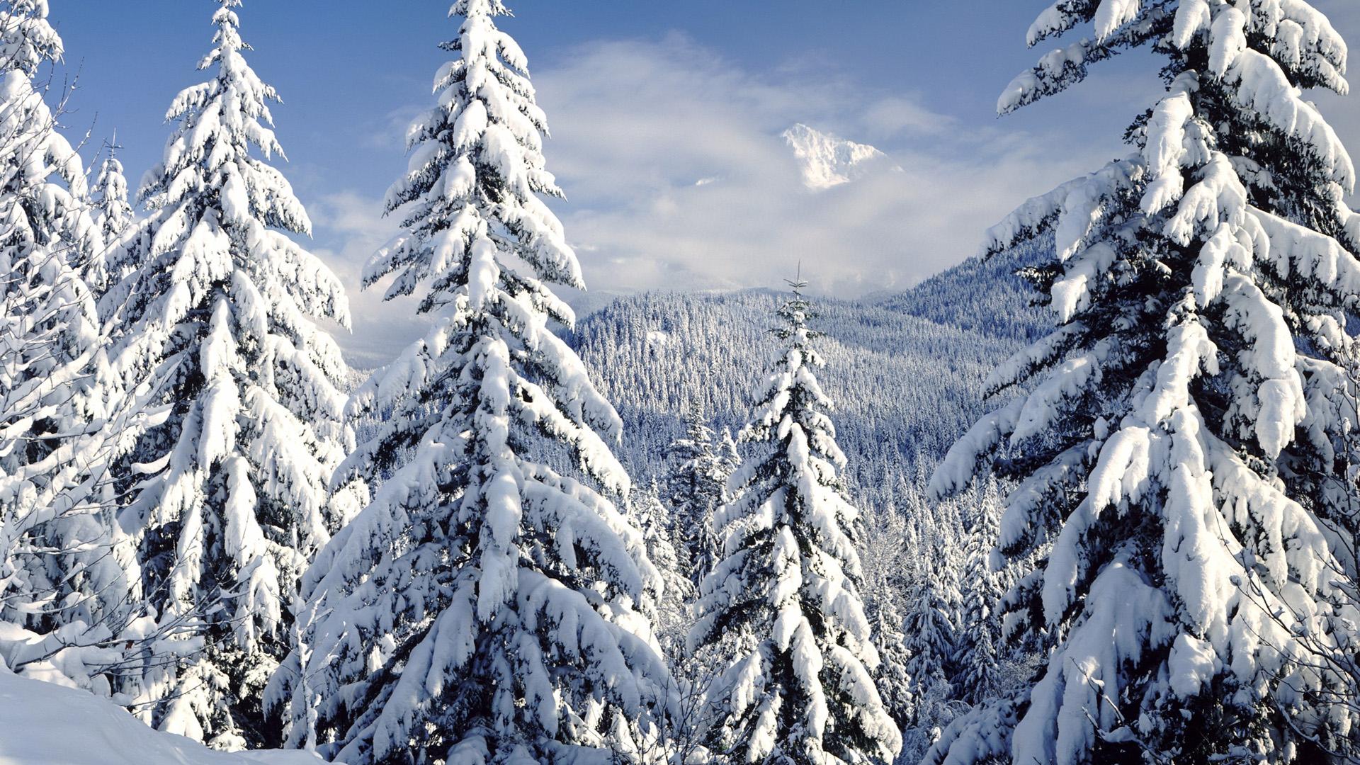 1080p Snow Scenes Vol 2   Free    FlashRolls  HD Wallpaper