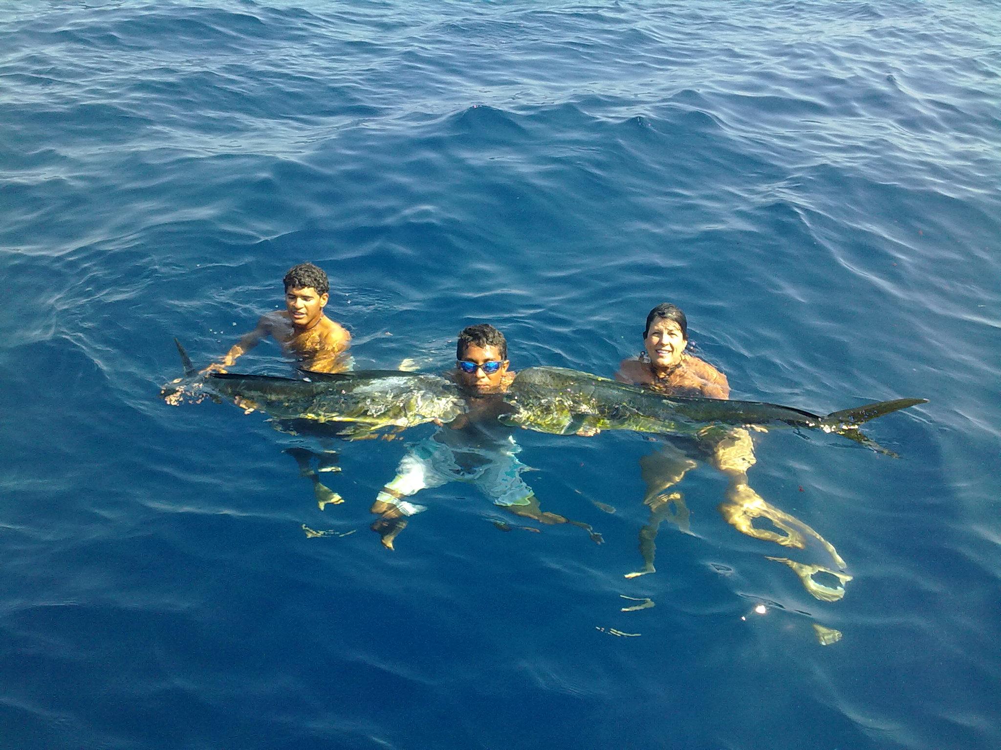 Costa Rica Sportfishing report   2013 sport fishing HD Wallpaper