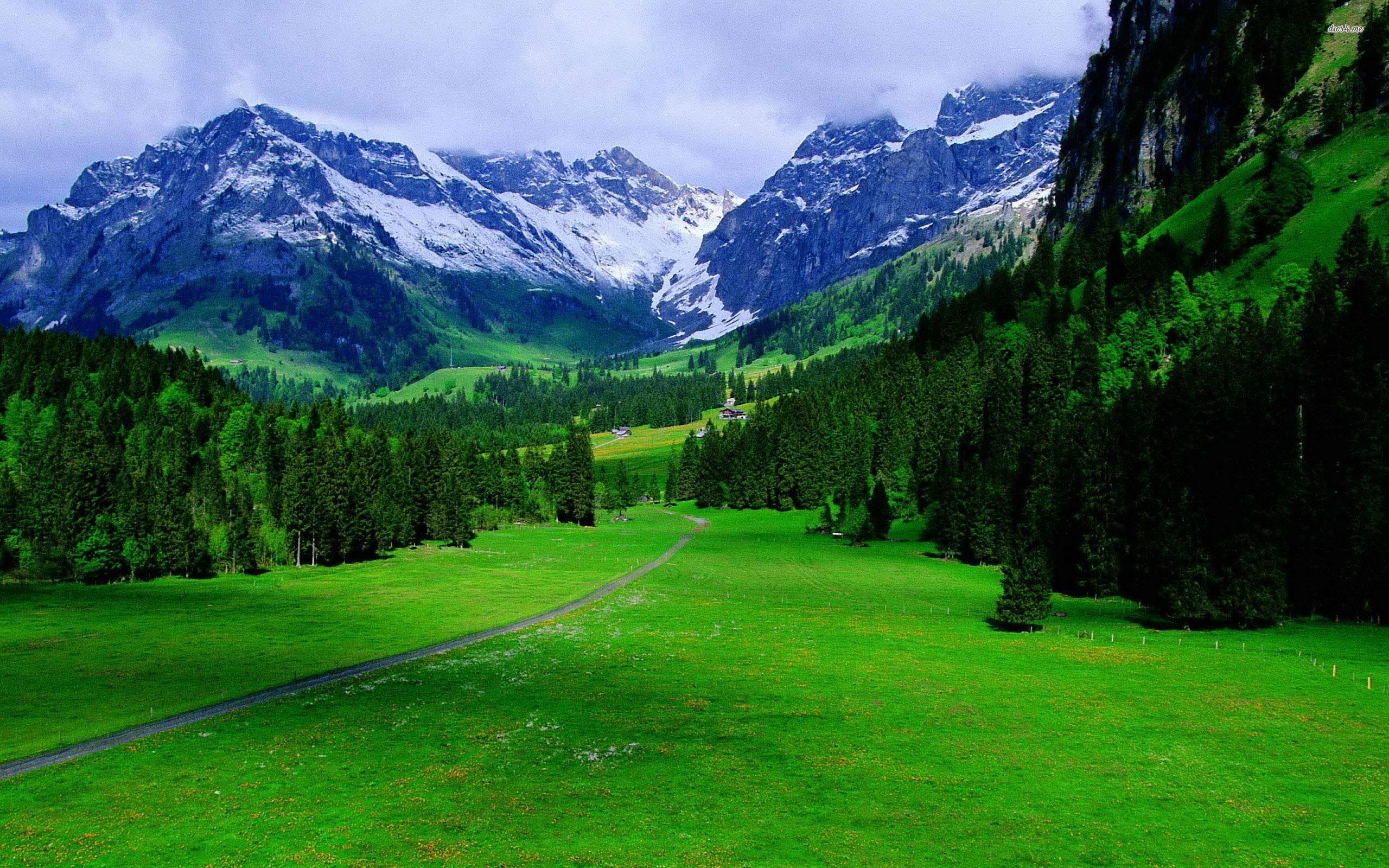 The Alps in Switzerland HD Wallpaper