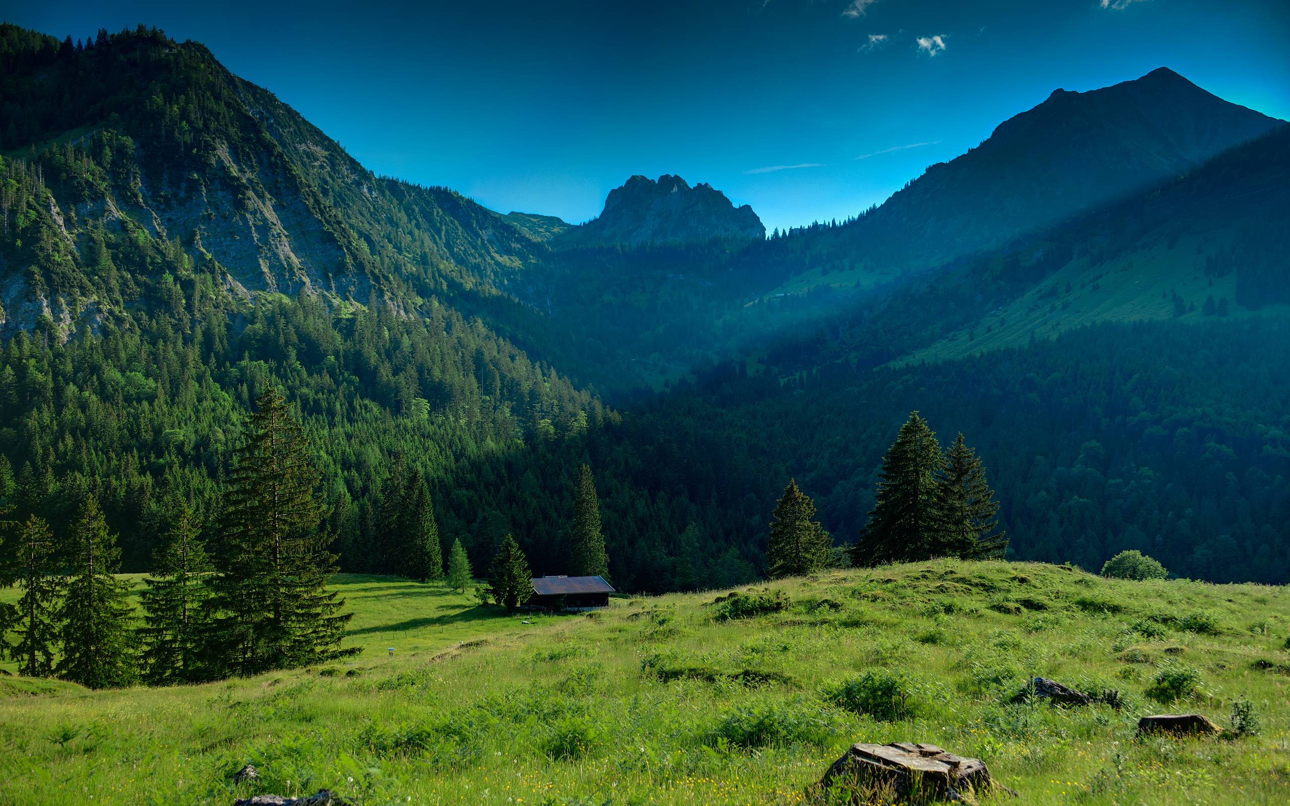 Bavarian Alps by Rudolf Koller HD Wallpaper