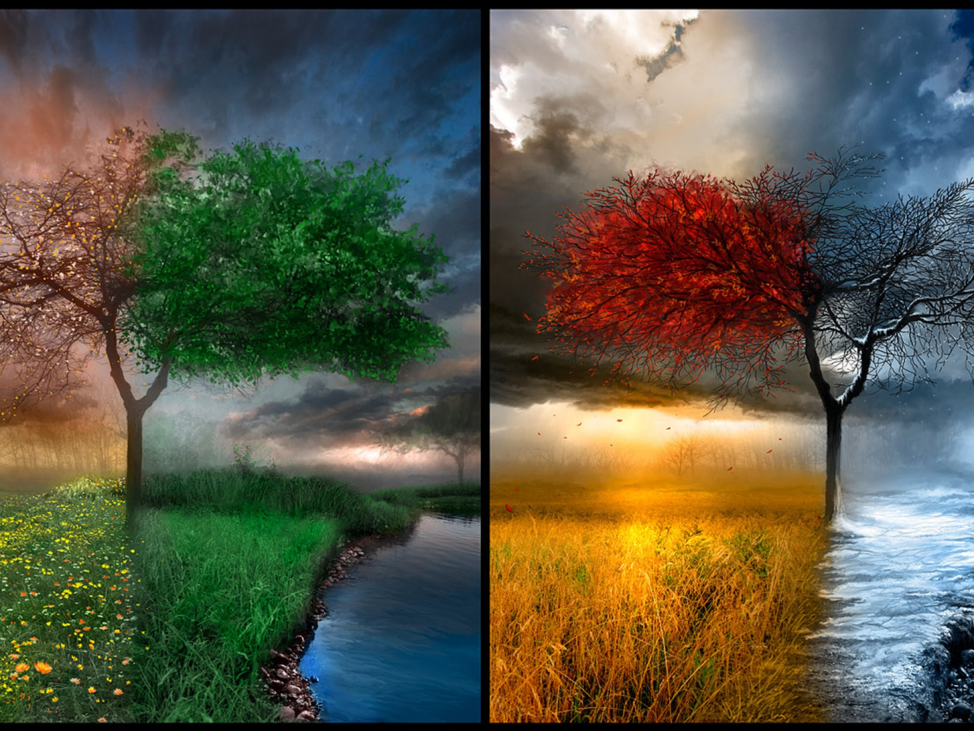 Landscapes Winter Trees Autumn HD Wallpaper